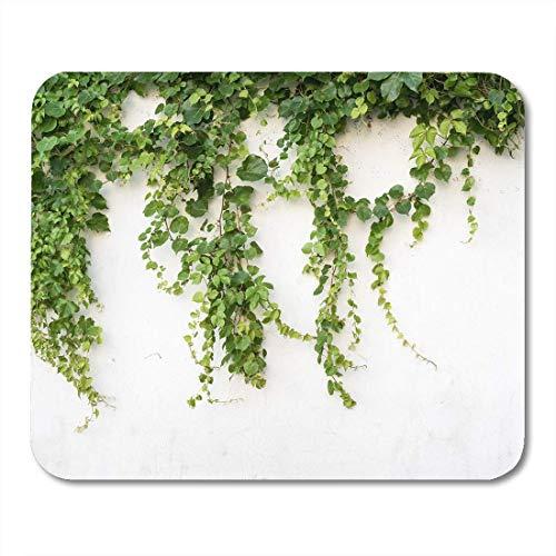 Mauspad grüne wand efeublätter pflanze klettern grün creeper garden mousepad für notebooks, Desktop-computer mausmatten