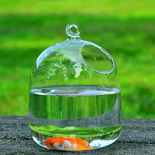 CAIDUD Appendere vasi di Vetro Trasparenti Acquario di Pesci Serbatoi Fatti a Mano Decorazione Acquario - Creare Atmosfera rinfrescante in casa