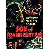 Wee Blue Coo Movie Film Sequel Son Frankenstein Karloff