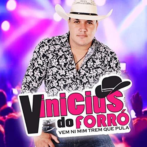 Vinicius Do Forró