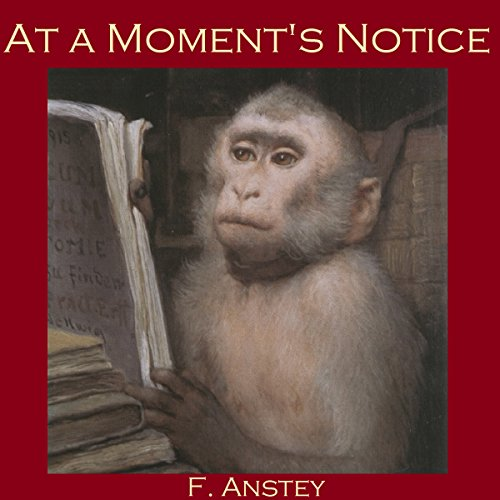 At a Moment's Notice audiobook cover art