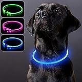 PZRLit Collar Luminoso Perro Recargable, Collar Luz Perros Impermeable, Collar LED Perro para Perros Pequeños Cachorro, Medianos y Grandes, Collar Reflectante Perro de Seguridad-Azul