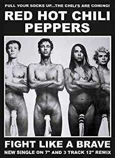 Red Hot Chili Peppers Poster (23