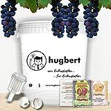 HUGBERT Weinset Nr 1, 15/17 L, Weinhefe, Gärbehälter ohne Bohrung + Deckel ohne Bohrung, Gärröhrchen, Dichtgummi + GRATIS!