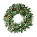 """Christopher Knight Home 307398 24"""" Cashmere Pine and Mixed Needles Warm White LED Artificial Christmas Wreath with Snowy Branches and Pinecones, Green"""