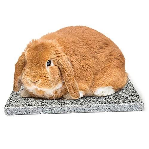 ウサギ涼感マット 魔法の天然石 ペットひんやり 25*15*1.5cm ウサギ ハムスター用 涼しい 夏 暑さ対策 熱中症対策
