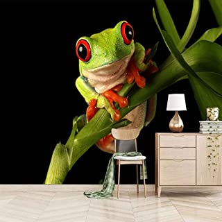 VITICP Adults Kids Wall Stickers Decals Peel and Stick Removable Wallpaper Animal Frog for Nursery Bedroom Living Room TV ...