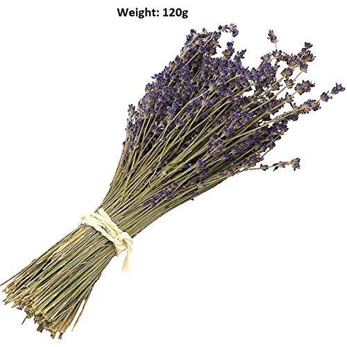 Natürlicher getrockneter Lavendel-Bündel, frisch geernteter Lavendelstrauß, Lila, dekorativer Blumenstrauß für Hochzeit, Zuhause, Party, Valentinstagsgeschenk