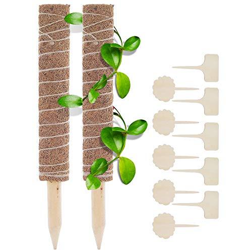 2 Stück Pflanzstab Kokos, mit 10 Holzetiketten, Rankstäbe Rankhilfe Blumenstab, für Pflanzenname, Pflanzzeit, aus Natürlicher Kokosfaser, Verlängerbar, für Dekoration (30cm)