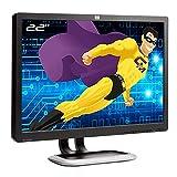 HP PC-Bildschirm Pro 22 Zoll L2208W GX007A HSTND-2381-B TFT VGA 16:10 Widescreen