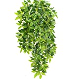 XHXSTORE 2pcs Planta Artificial Colgante Enredadera Plastico 40cm Rama Guirnaldas Hiedra Decoracion para Exterior Interior Balcon Terraza Cocina Baño Maceta Cesta Jardinera Boda Fiesta Verde