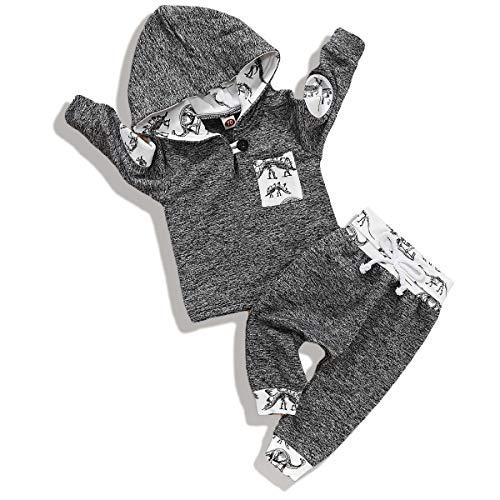 Qiraoxy Baby Langarm Kapuzenanzug Herbst Winter Baby Kleinkind Junge Mode Dinosaurier Print Stitching Outfits Kleidung mit Kapuze Outfits 2-teiliges Set (Hemd Hose (grau) Gr. 2-3 Jahre, grau
