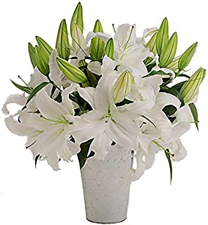 Stargazer Barn - Grand Bouquet Of Fragrant White Lilies With A French Bucket Style Vase - American Grown