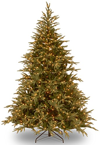 National Tree Company 'Feel Real lit Artificial Christmas Tree Includes Pre-strung Multi-Color LED Lights and Stand, Frasier Grande - 6 ft, 6-FEET