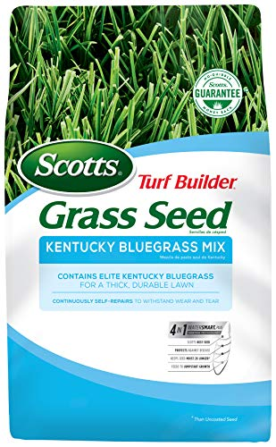 Scotts Turf Builder Grass Seed Kentucky Bluegrass Mix - 7 lb., Use in Full Sun, Light Shade, Fine Bladed Texture, and Medium Drought Resistance, Seeds up to 4,660 sq. ft.