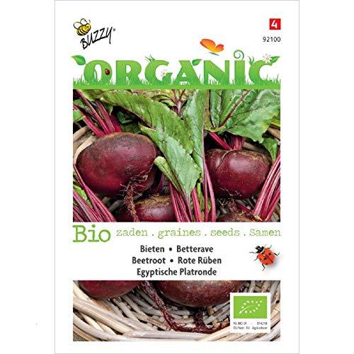 Buzzy® Organic Rote Rüben Ägyptische Plattrunde (Beta vulgaris)