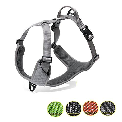 Truelove Hundegeschirr 3m Reflektierendes Langlebiges Nylon Verstellbares Geschirr Hunde Atmungsaktives Mesh(Beratung wählen Sie Größere Größe für Große Rasse)(L,Grau)