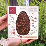 Domori Pasqua Quantum Tavoletta Di Cioccolato 500g. gusti vari (Cioccolato al latte e nocciole)