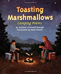 Toasting Marshmallows by the Camp Fire