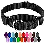 Country Brook Petz - Black Martingale Heavy Duty Nylon Dog Collar - 21 Vibrant Color Options (1 Inch Width, Medium)