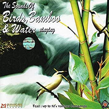 The Sounds Of Birds, Bamboo & Water