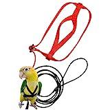 Arnés ajustable para loros, arnés para pájaros y correa antibichos para entrenamiento con cuerda para animales fomáticos, tracción al aire libre, tamaño pequeño (XXS)