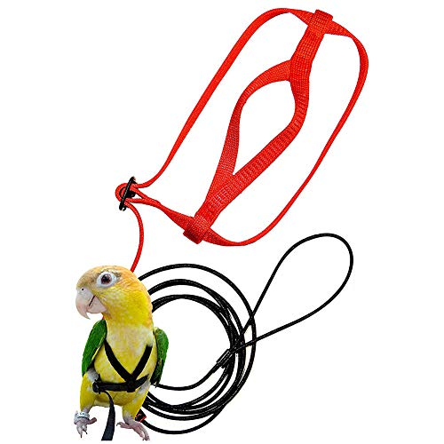 Vogel Leine Vogelgeschirr Nymphensittich Vogelgeschirr Wellensittich Vogelgeschirr Aviator Nylon Anti-Biss Traktions Training Im Freien für Psittacus Erithacus Scarlet Macaw Papageien Vögel