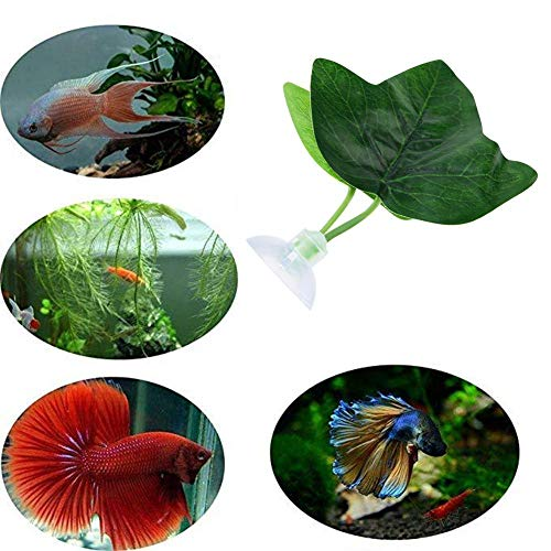 Aquariumversieringen, hoge simulatie Leaf Eco-vriendelijke Betta hangmat Fish Rest Decor Supplies