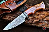 Bobcat Knives Custom Handmade Hunting Knife Damascus Steel Blade Olive Wood Handle 10'' Overall