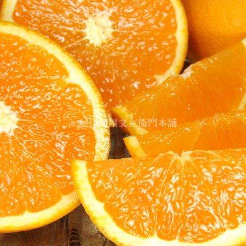 和歌山 有田産 清見オレンジ 5kg ギフト選別品 紀州和歌山有田みかんの里から