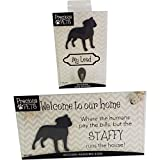 PRECIOUS PETS DOG PLAQUE AND DOG LEAD HOOK PACK, STAFFY, FUNNY SIGNS, DOG MUM GIFTS, DOG ACCESSORIES, HOUSE STUFF