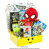 Toy Subscription Box