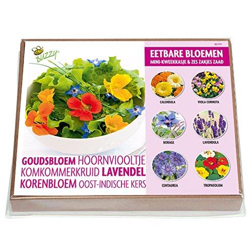 Essbare Blüten Anzuchtset - 6 Sorten mit mini Gewächshaus