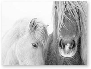 dayanzai Icelandic Horse Wall Art Canvas Painting Black and White Wild Horse Posters and Prints Modern Photography Picture Farmhouse Decor-50x70cm-No Frame