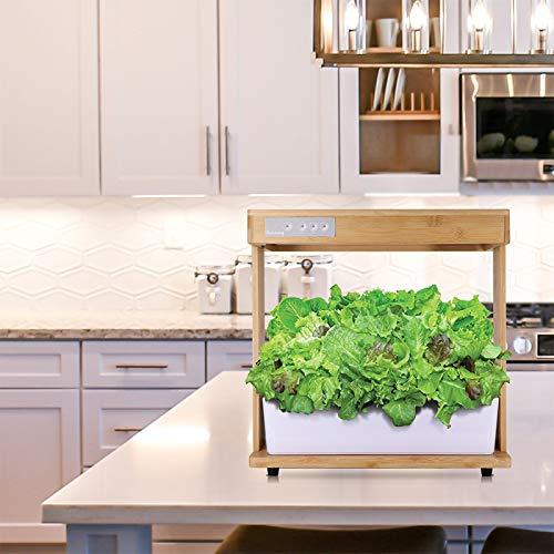 SONLI Grow Light for Plant Indoor Kit De Culture du Système De Culture Hydroponique en Bambou Naturel Mini Lampe pour Plante Fleurs Aux Légumes