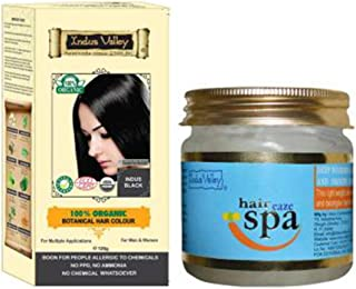 Indus Valley 100% Organic Botanical Indus Black Chemical free Hair Color with Hair Eaze Spa 175ml for Hair Care