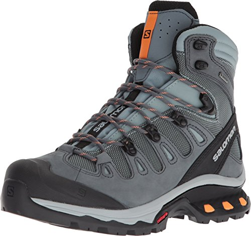 Salomon Women's Quest 4D 3 GTX W Backpacking, Lead/Stormy Weather/Bird of Paradise, 11