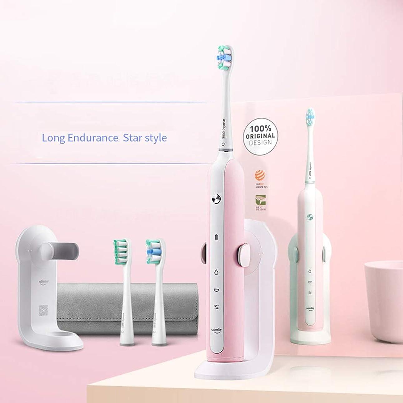 エレクトロニック端モーター電動歯ブラシ 大人の電動歯ブラシ音波振動3時間の速い充満は歯の汚れの歯ブラシを取除きます (色 : C)