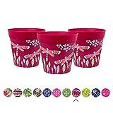 Juego de 3 macetas coloridas de Hum Flowerpots, rosa