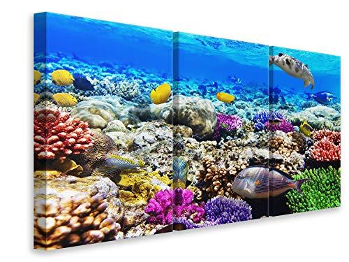 Canvasfoto 3-delig Fish Aquarium, 90x60cm (3x30x60cm)