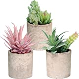 Wootkey 3 Pack Artificial Flocked Succulent Plants in Paper Pulp Pots Fake Small Greenery Potted Succulent Plants for Shelf Bathroom Office Desk Table Centerpiece Kitchen Window Sill Decor