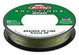 Berkley Fishing Gear Braided Fishing Line, Green-110-Yard/40-Pound