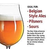 Spiegelau & Nachtmann, 6-teiliges Biertulpen-Set, Kristallglas, 440 ml, 4991884, Beer Classics - 4