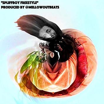 Spliffboy Freestyle