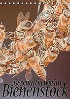 Geschaeftig wie im Bienenstock (Tischkalender 2022 DIN A5 hoch): Ein Einblick in das Innenleben des Bienenstocks (Monatskalender, 14 Seiten )