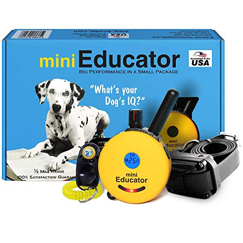 Bundle of 2 Items - E-Collar - ET-300 - 1/2 Mile Remote Waterproof Trainer Mini Educator - Static, Vibration and Sound Stimulation Collar With PetsTEK Dog Training Clicker Training Kit