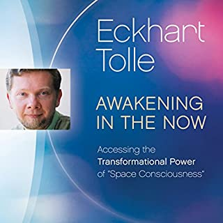 Awakening in the Now cover art