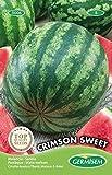 Germisem Crimson Sweet Semi di Anguria 3 g