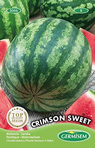 Germisem Wassermelone CRIMSON SWEET