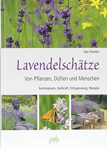 Lavendelschätze: Von Pflanzen, Düften und Menschen